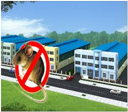 Diệt chuột và kiểm soát chuột tại khu công nghiệp