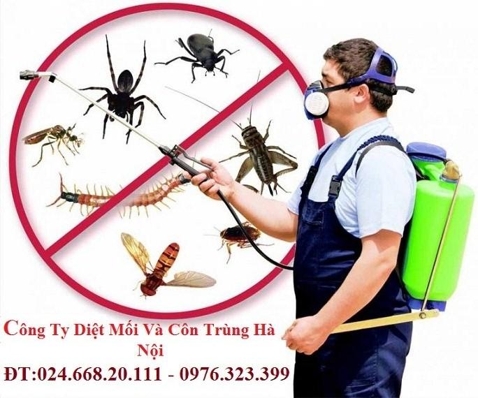 Kỹ thuật diệt côn trùng
