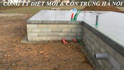 Lắp đặt hệ thống bảo trì phòng mối cho công trình xây dựng mới