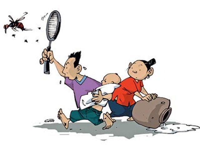 Kiểm soát và tiêu diệt muỗi gây hại